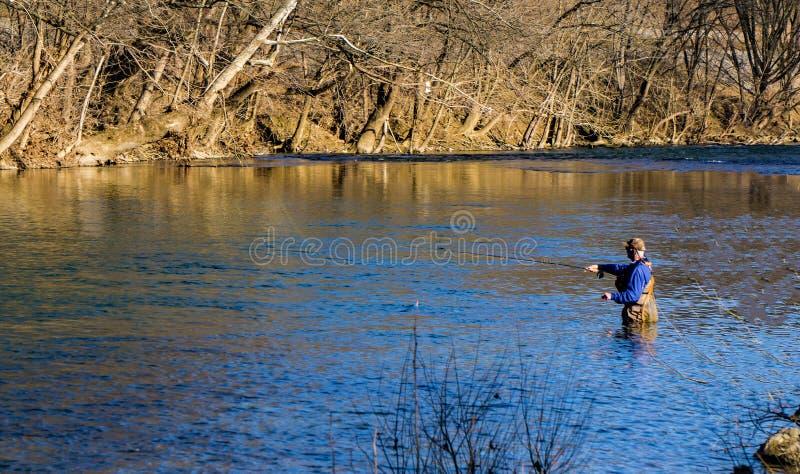 Απόλαυση ψαράδων μυγών που αλιεύει για την πέστροφα ουράνιων τόξων στον ποταμό Roanoke, Βιρτζίνια, ΗΠΑ στοκ φωτογραφία