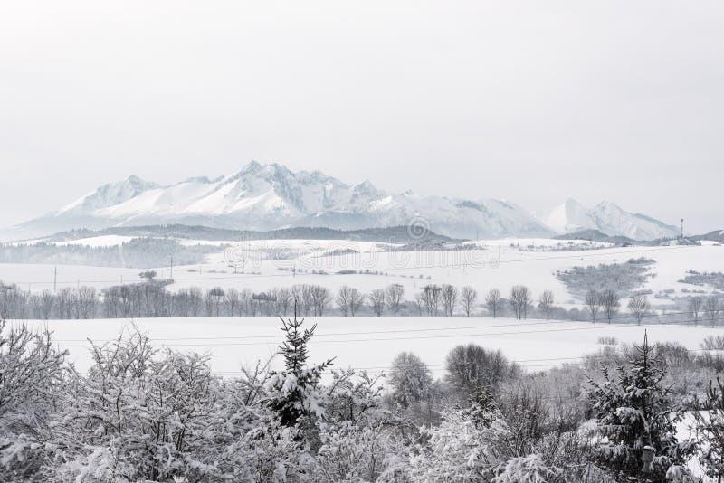 Απόμακρη άποψη σχετικά με τη σλοβάκικη πλευρά υψηλού Tatra καλυμμένο βουνά W στοκ εικόνες με δικαίωμα ελεύθερης χρήσης