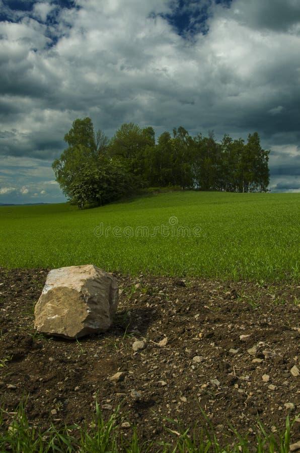 Απόμερη πέτρα στον τομέα στοκ φωτογραφία με δικαίωμα ελεύθερης χρήσης