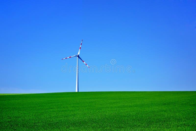 Απόμερος ανεμοστρόβιλος στο πράσινο λιβάδι στοκ φωτογραφίες