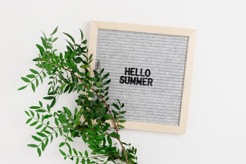 Απόσπασμα - γειά σου καλοκαίρι Letterboard και κλάδος φυστικιών στοκ φωτογραφίες