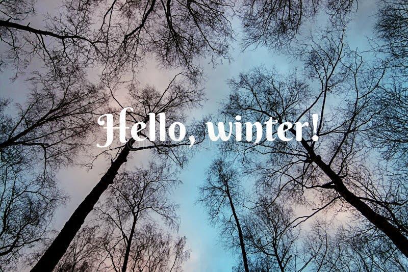 Απόσπασμα τυπογραφίας Γειά σου, χειμώνας στοκ φωτογραφίες