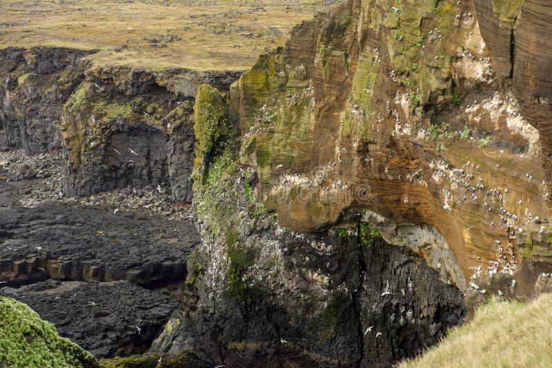 Απότομοι βράχοι βασαλτών Londrangar στην Ισλανδία στοκ εικόνες