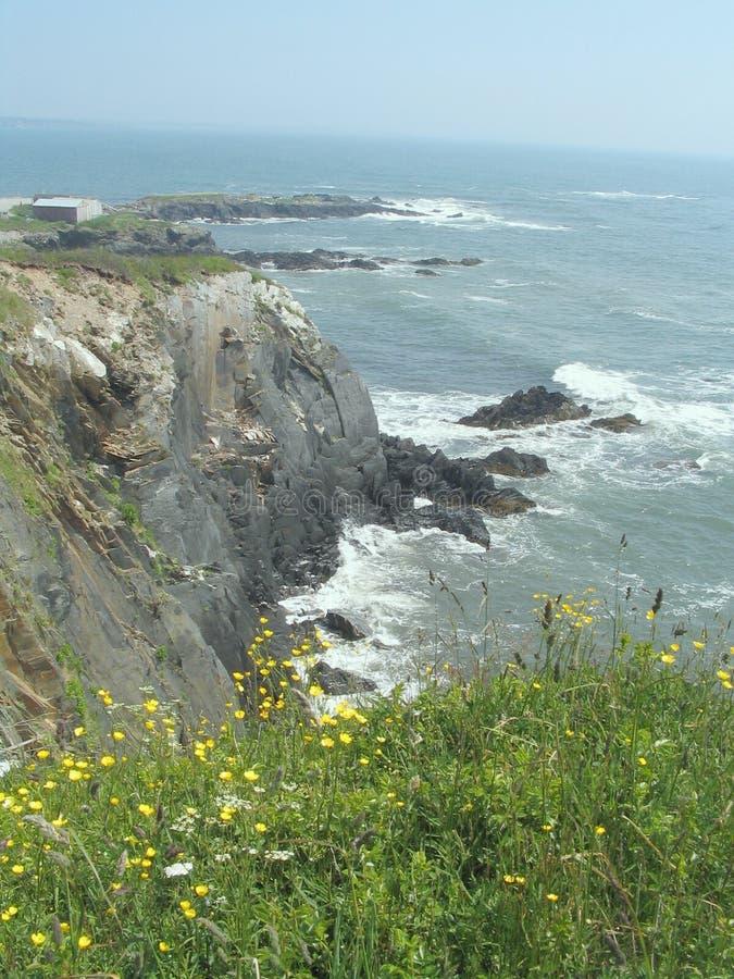 απότομοι βράχοι Νέα Σκοτία στοκ φωτογραφία με δικαίωμα ελεύθερης χρήσης