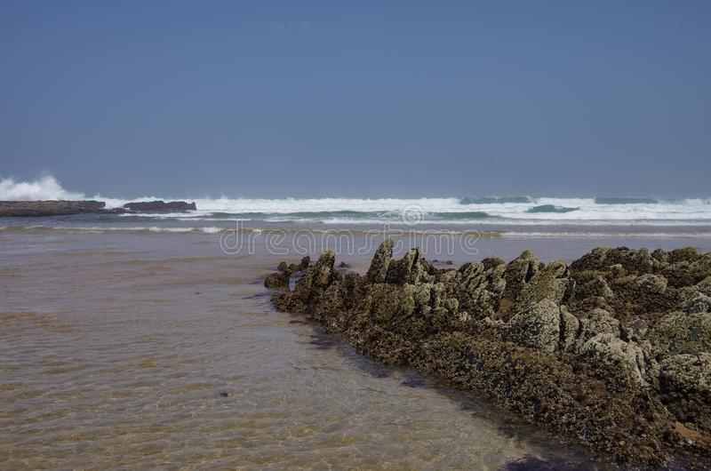 Απότομοι βράχοι σε Praia DA Fateixa Ατλαντική παραλία Arrifana στο Αλγκάρβε στοκ εικόνα