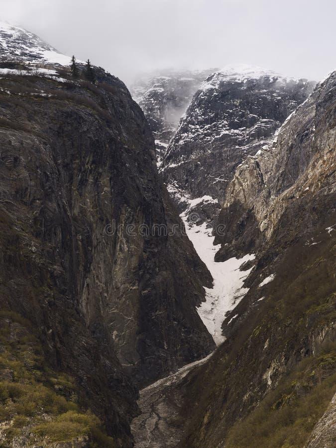 Απότομοι γυαλισμένοι Glacially βράχος στο φιορδ βραχιόνων της Tracy, νοτιοανατολική Αλάσκα στοκ εικόνα