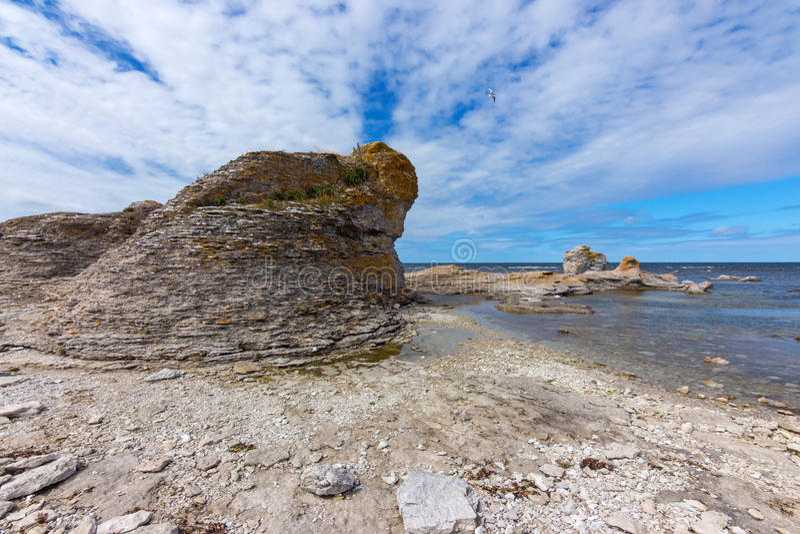 Απότομος βράχος ασβεστόλιθων στη δύσκολη ακτή της Gotland, Σουηδία στοκ φωτογραφίες με δικαίωμα ελεύθερης χρήσης