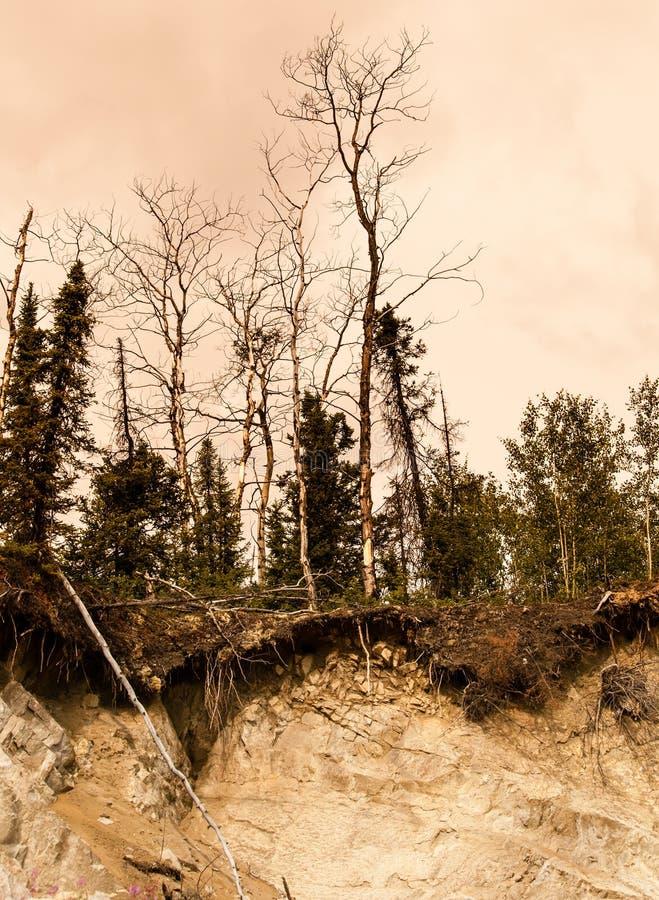 Απότομος βράχος καθιζήσεων εδάφους στοκ φωτογραφίες με δικαίωμα ελεύθερης χρήσης