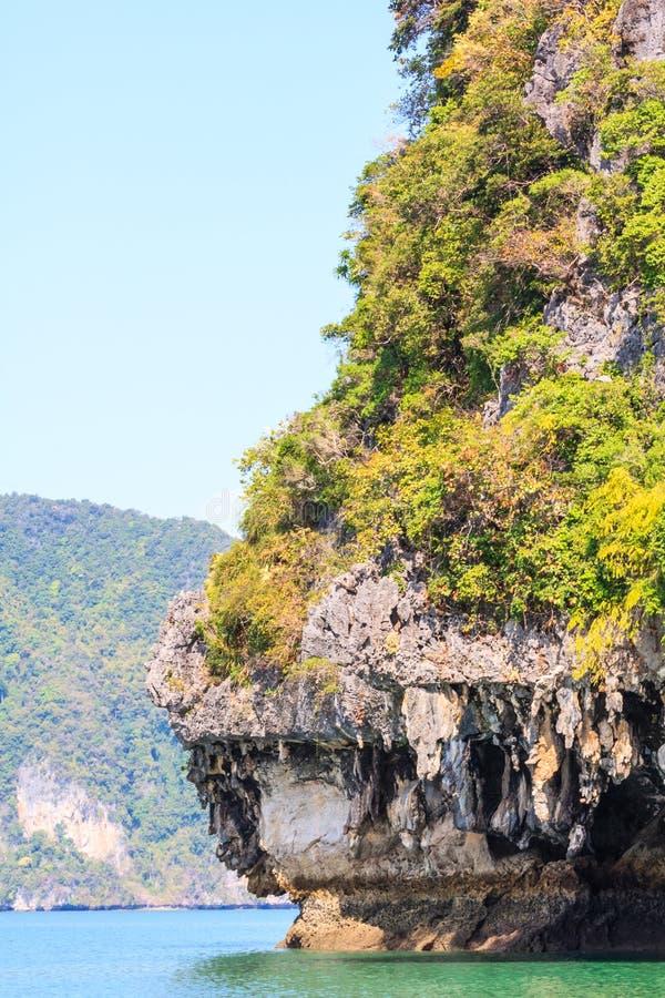 Απότομος βράχος και σταλακτίτες ασβεστόλιθων στοκ εικόνα