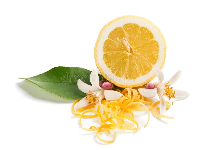 Απόλαυση και λουλούδι των φρούτων λεμονιών στοκ εικόνες