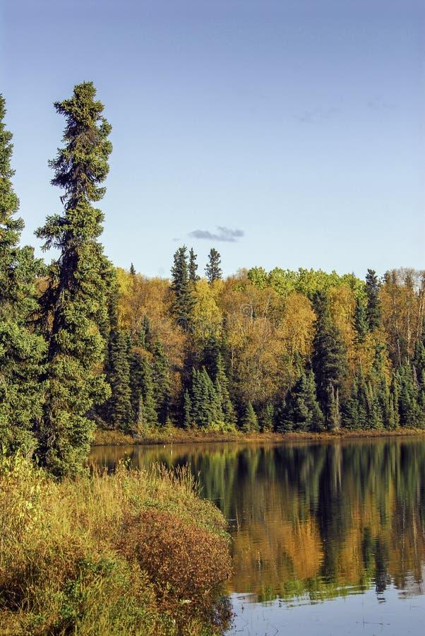 Από την Αλάσκα λίμνη το φθινόπωρο στοκ φωτογραφία με δικαίωμα ελεύθερης χρήσης
