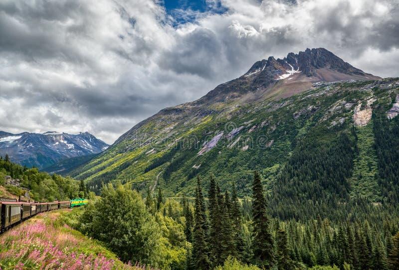 Από την Αλάσκα τραίνο που ταξιδεύει κοντά σε Skagway, AK στοκ εικόνες με δικαίωμα ελεύθερης χρήσης