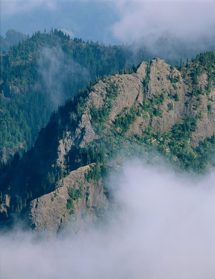 Από τη σύνοδο κορυφής του υποστηρίγματος Townsend, αγριότητα Buckhorn, ολυμπιακό εθνικό πάρκο, Ουάσιγκτον στοκ φωτογραφίες με δικαίωμα ελεύθερης χρήσης