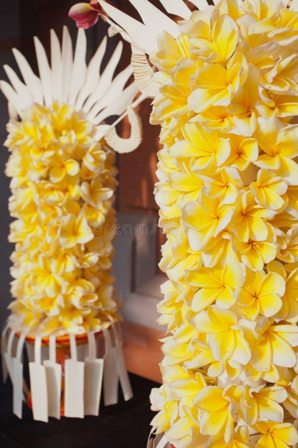 Από το Μπαλί υπόβαθρο λουλουδιών στοκ φωτογραφίες