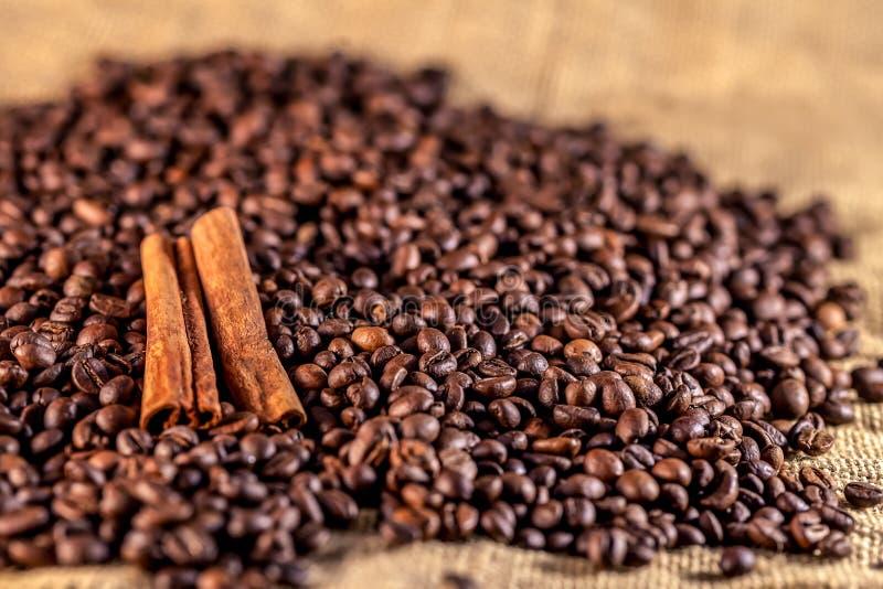 απόλυση καφέ κανέλας φασ&omic στοκ εικόνες με δικαίωμα ελεύθερης χρήσης