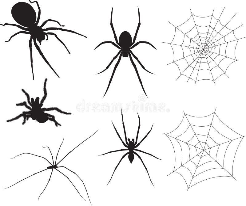 αράχνες διανυσματική απεικόνιση