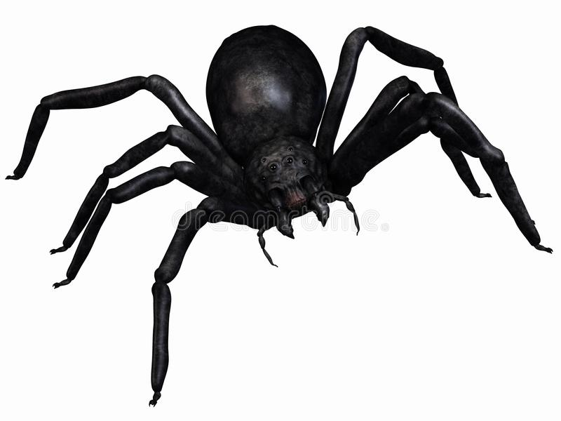 Download αράχνη φαντασίας απεικόνιση αποθεμάτων. εικονογραφία από φρίκη - 17058611