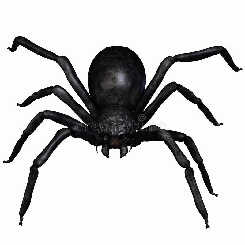 Download αράχνη φαντασίας απεικόνιση αποθεμάτων. εικονογραφία από κίνδυνος - 17058625