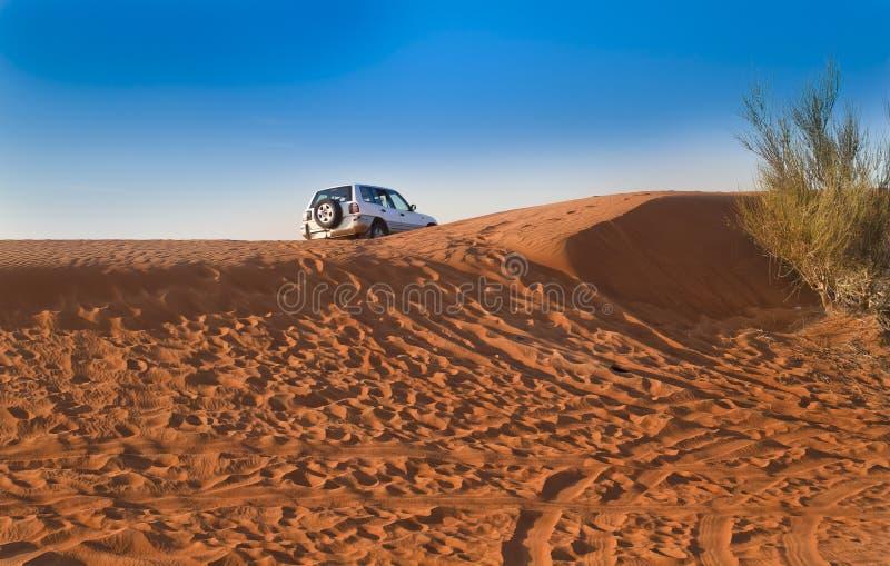 Αραβική έρημος, Ντουμπάι στοκ εικόνες