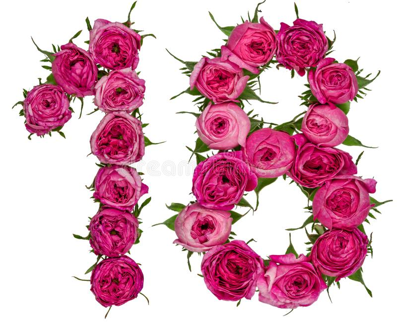 Αραβικός αριθμός 18, δεκαοχτώ, από τα κόκκινα λουλούδια του τριαντάφυλλου, που απομονώνονται στοκ εικόνες