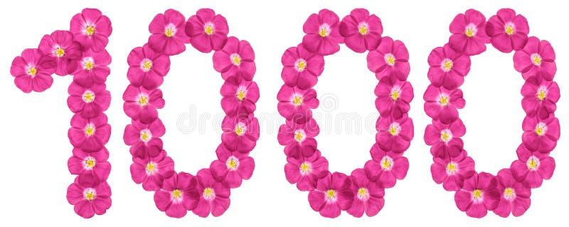 Αραβικός αριθμός 1000, χίλιοι, από τα ρόδινα λουλούδια του λιναριού, που απομονώνονται στο άσπρο υπόβαθρο διανυσματική απεικόνιση