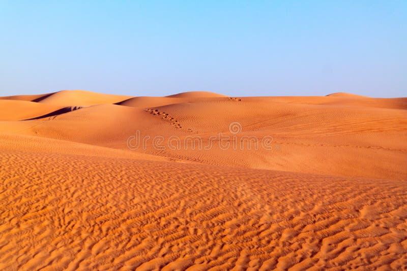 Αραβικό υπόβαθρο αμμόλοφων ερήμων στο μπλε ουρανό στοκ φωτογραφία