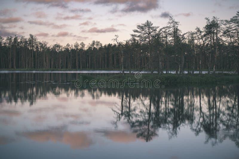 αργά το βράδυ ήλιος πέρα από τις λίμνες ελών το καλοκαίρι - η εκλεκτής ποιότητας αναδρομική ταινία κοιτάζει στοκ φωτογραφίες