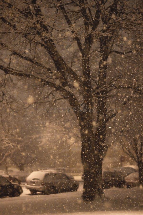 Αργά - χιόνι νύχτας στοκ φωτογραφίες