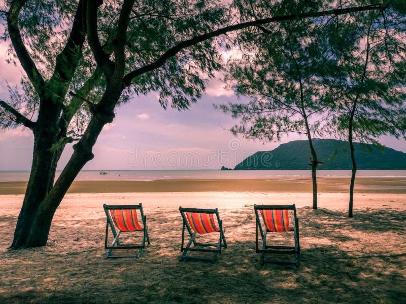 Αργόσχολοι ήλιων κάτω από το δέντρο στην εγκαταλειμμένη παραλία στοκ εικόνες