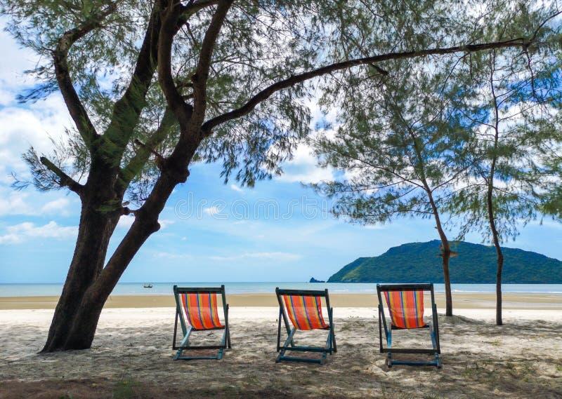 Αργόσχολοι ήλιων κάτω από το δέντρο στην εγκαταλειμμένη παραλία στοκ εικόνα