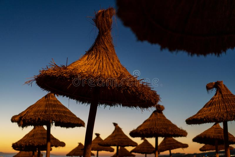 Αργόσχολοι στο ηλιοβασίλεμα σε μια τροπική παραλία στοκ εικόνες