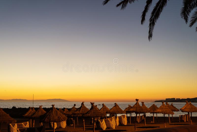 Αργόσχολοι στο ηλιοβασίλεμα σε μια τροπική παραλία στοκ φωτογραφία