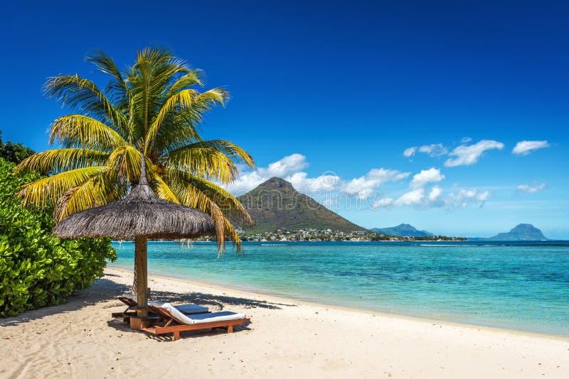 Αργόσχολοι και ομπρέλα στην τροπική παραλία στο Μαυρίκιο στοκ φωτογραφία με δικαίωμα ελεύθερης χρήσης