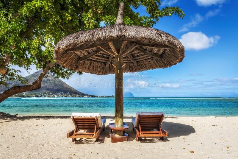 Αργόσχολοι και ομπρέλα στην τροπική παραλία στο Μαυρίκιο στοκ εικόνες