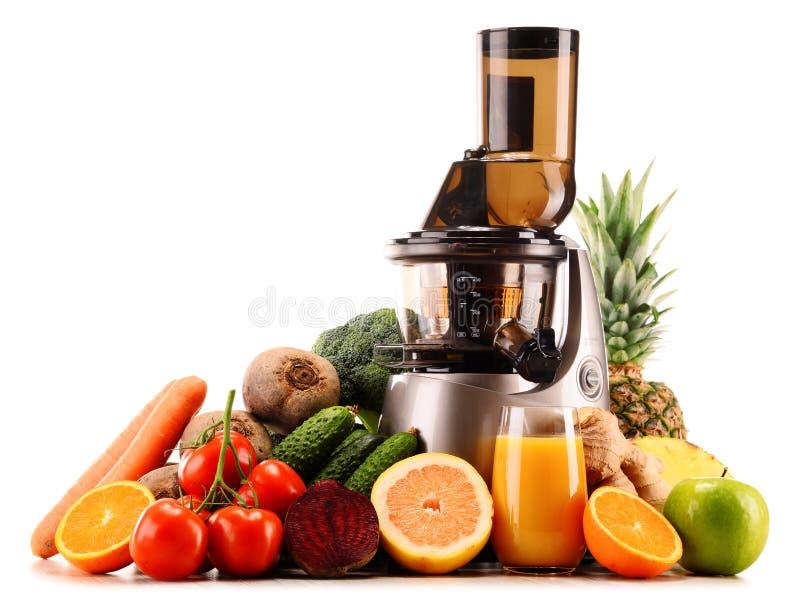 Αργό juicer με τα οργανικά φρούτα και λαχανικά στο λευκό στοκ φωτογραφία με δικαίωμα ελεύθερης χρήσης