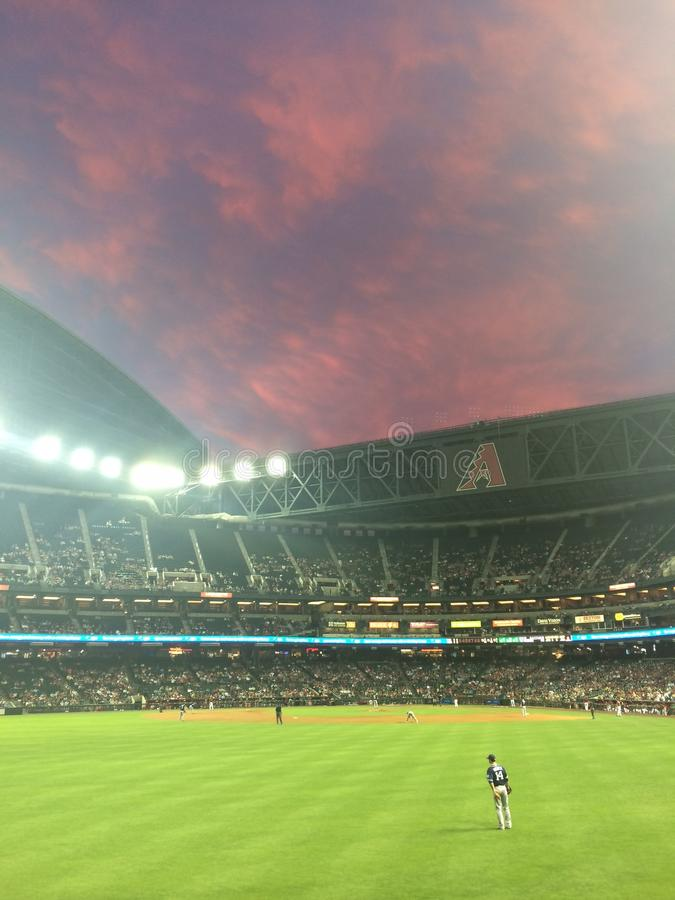 Αριζόνα Diamondbacks στο ηλιοβασίλεμα στοκ φωτογραφίες με δικαίωμα ελεύθερης χρήσης