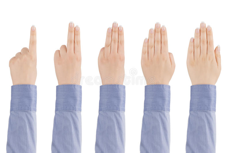Αριθμήσεις χεριών γυναίκας από το ένα έως πέντε. στοκ εικόνες με δικαίωμα ελεύθερης χρήσης