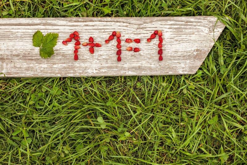 Αριθμοί και μαθηματικά σημάδια από τις φράουλες στοκ εικόνες
