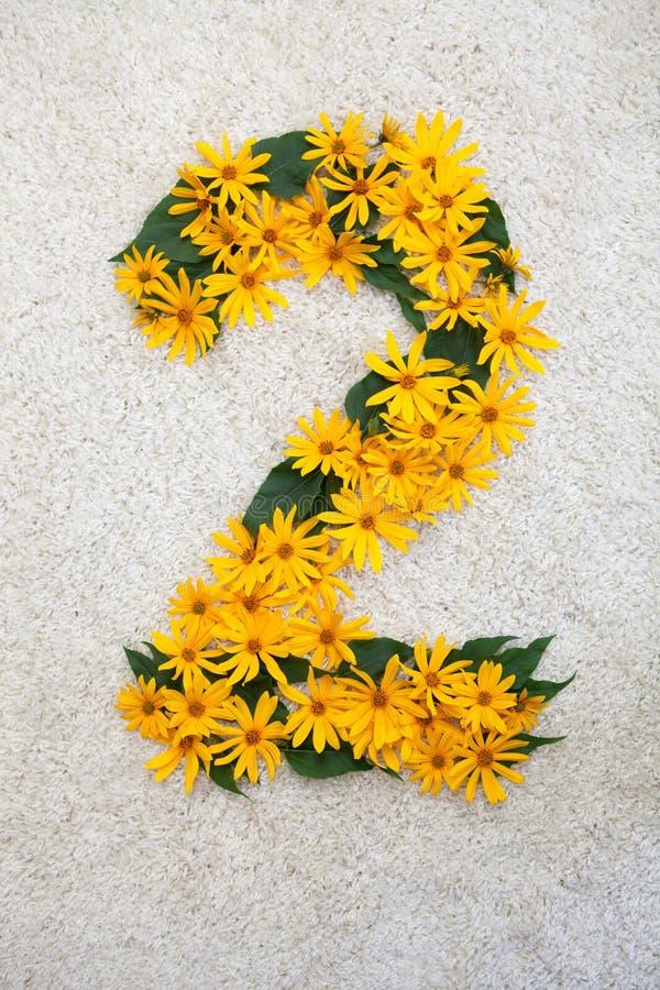 Αριθμοί φιαγμένοι από φύλλα και κίτρινα λουλούδια στοκ εικόνα
