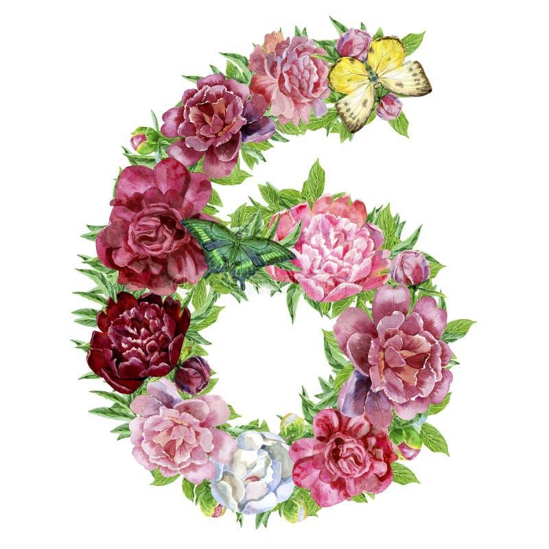 Αριθμός έξι λουλουδιών watercolor ελεύθερη απεικόνιση δικαιώματος