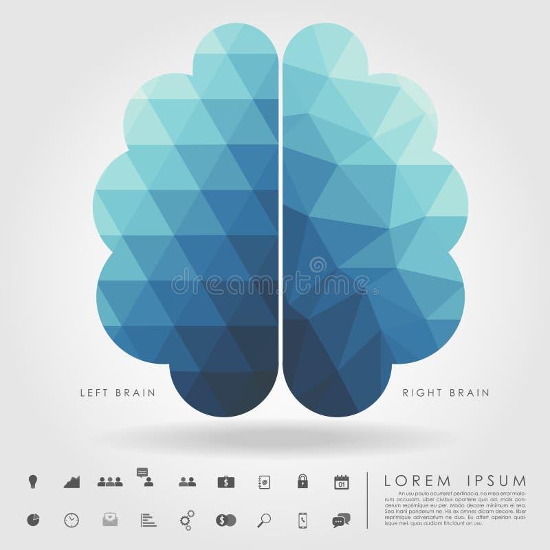 Αριστερός και δεξιός εγκέφαλος στο σχέδιο έννοιας και την ελεύθερη γεωμετρία μορφής ελεύθερη απεικόνιση δικαιώματος
