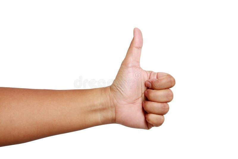 Αριστερό χέρι, αντίχειρας επάνω, άσπρη πλάτη στοκ εικόνες