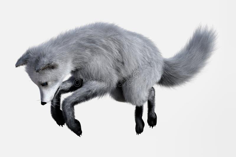 Αρκτική αλεπού που ψάχνει τα τρόφιμα διανυσματική απεικόνιση