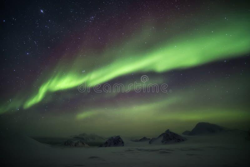 Αρκτικό χειμερινό τοπίο με τα βόρεια φω'τα - Svalbard, Spitsbergen στοκ εικόνες