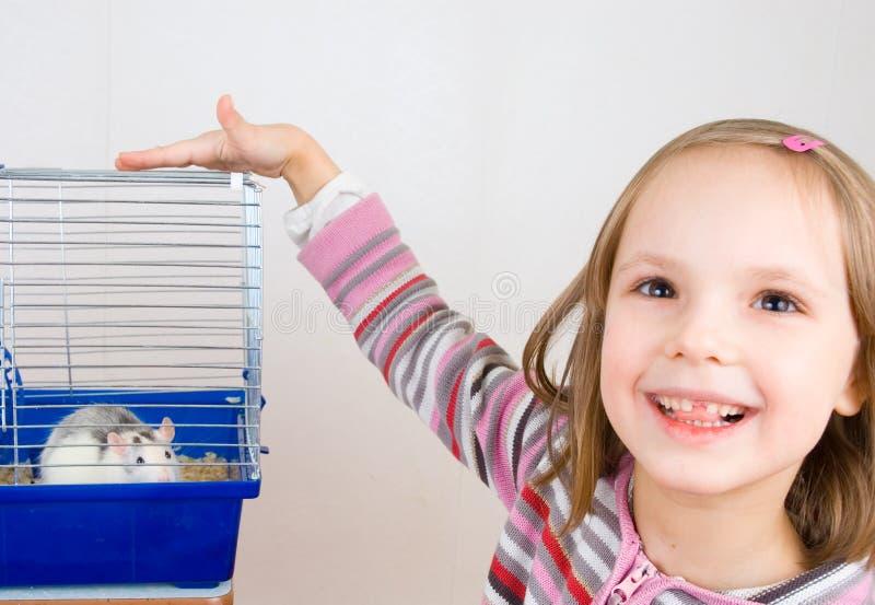 αρουραίος παιδικών παιχν στοκ εικόνα