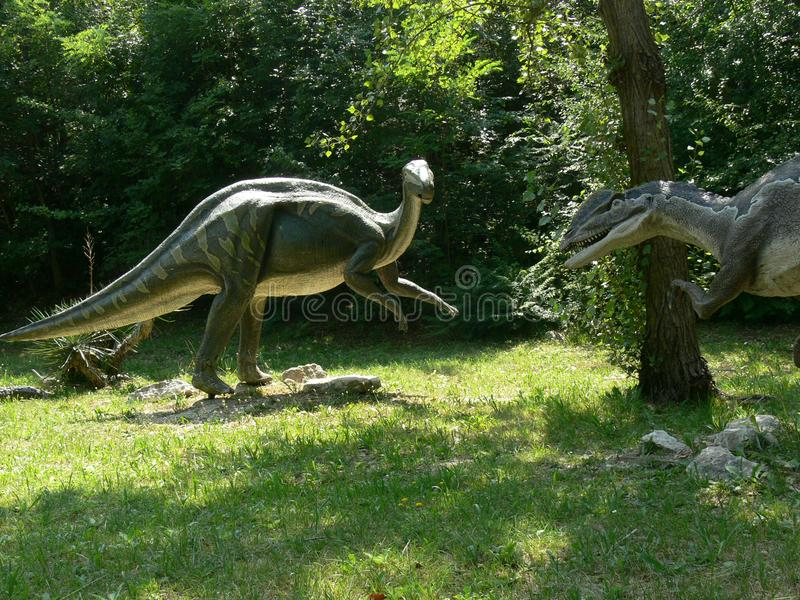 Αρπακτικός δεινόσαυρος που κρύβεται για να επιτεθεί σε ένα iguanodon στο ξύλο του πάρκου εξάλειψης στην Ιταλία στοκ εικόνες