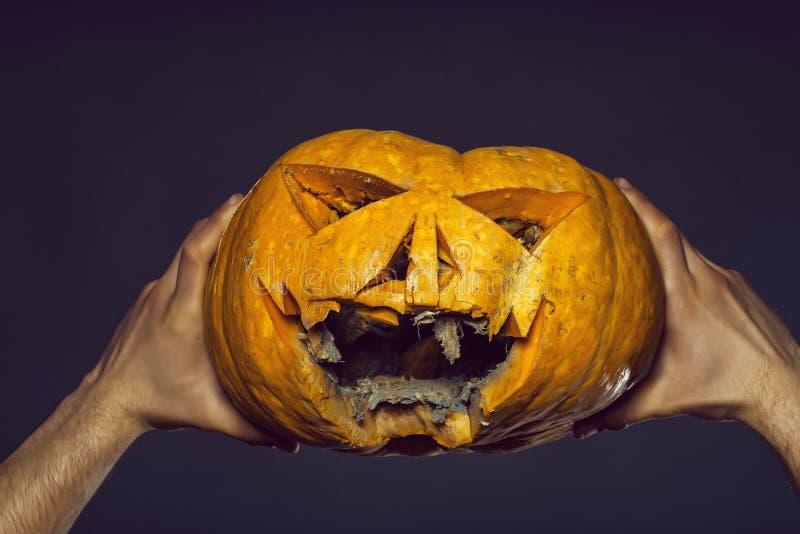 Αρσενικά χέρια με την κολοκύθα στοκ φωτογραφία