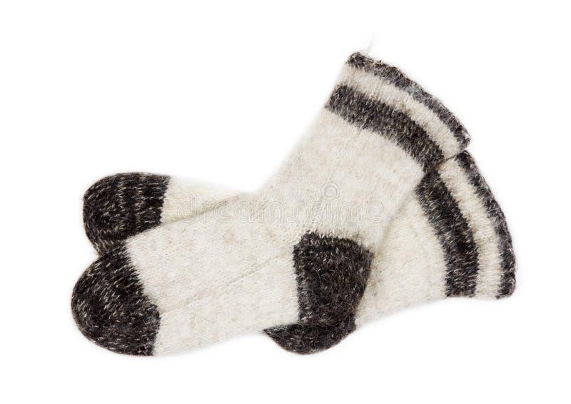 Αρσενικές άσπρες πλεκτές κάλτσες της γούνας σκυλιών στην άσπρη κινηματογράφηση σε πρώτο πλάνο υποβάθρου στοκ φωτογραφίες