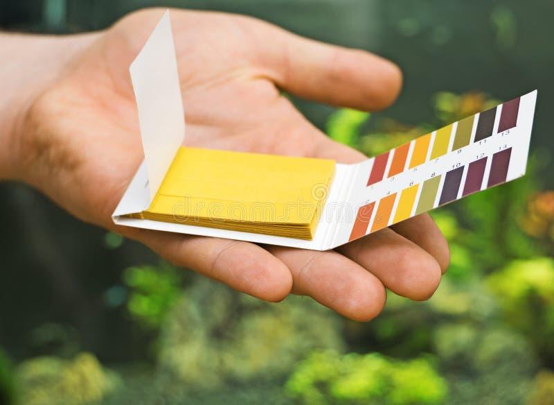 Αρσενικές δοκιμές εκμετάλλευσης pH χεριών στοκ φωτογραφίες με δικαίωμα ελεύθερης χρήσης