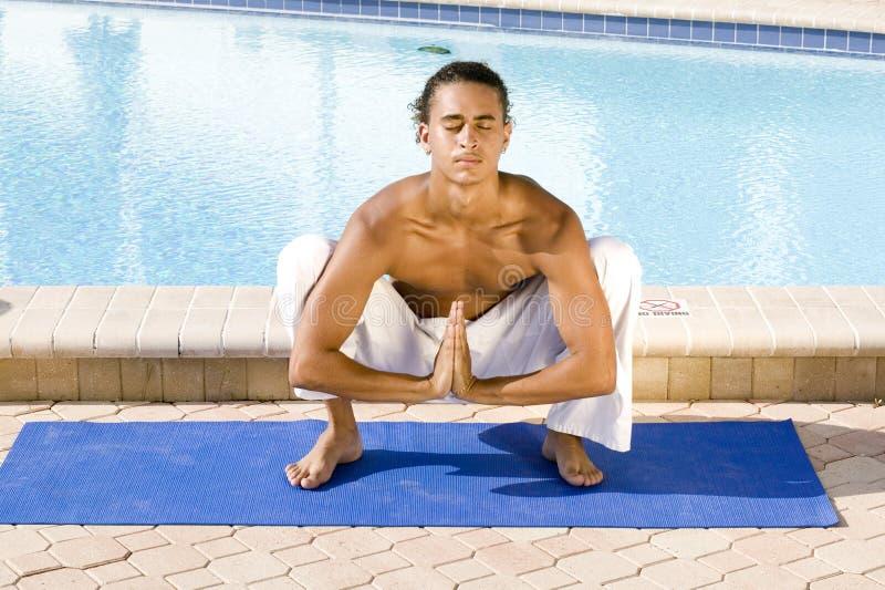 Download αρσενικές εν ενεργεία ν&epsi Στοκ Εικόνες - εικόνα από ζωή, υγεία: 1533426
